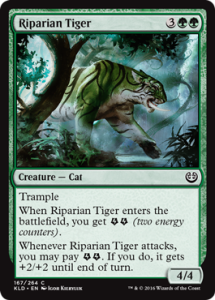 riparian-tiger