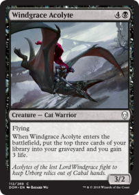 Windgrace Acoltye